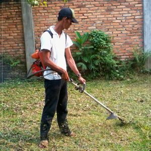 service mesin potong rumput